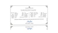 zestaw-historycznych-srebrnych-monet-z-czasow-poczatkow-mafii-certyfikat