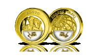 Listki-złota-ręcznie-umieszczone-w-medalu