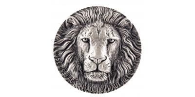 Wielka Piątka Afryki - Lew