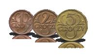 monety-obiegowe-ii-rzeczpospolitej-grosze