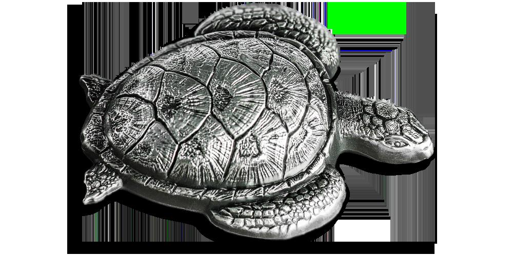 srebrna-wypukla-moneta-zolw-morski-lezacy