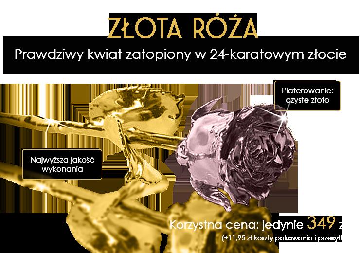 Prawdziwa róża zatopiona w 24-karatowym złocie