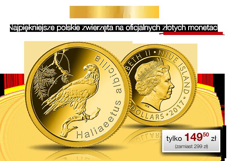 Bielik zwyczajny – symbol polskiej przyrody na oficjalnej złotej monecie